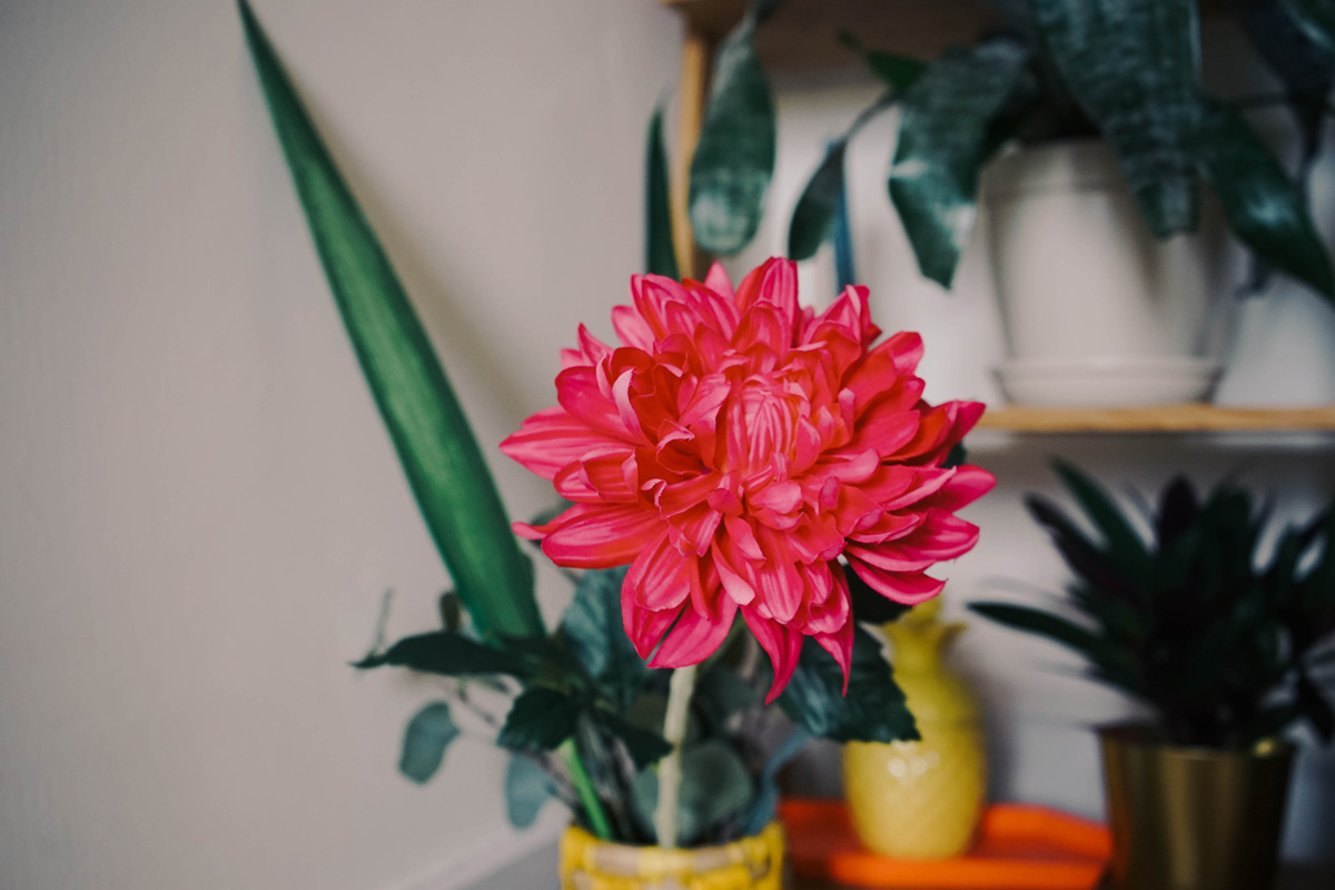 Dito Ikea Kunstblumen