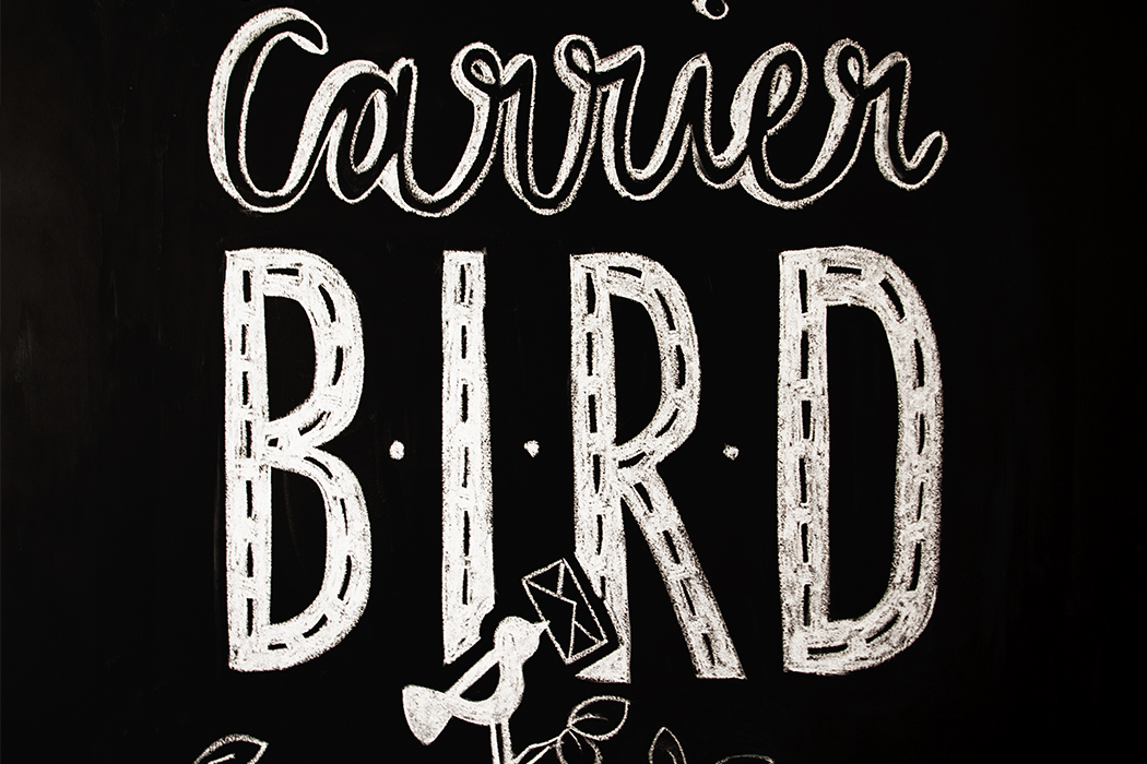 Carrier Bird