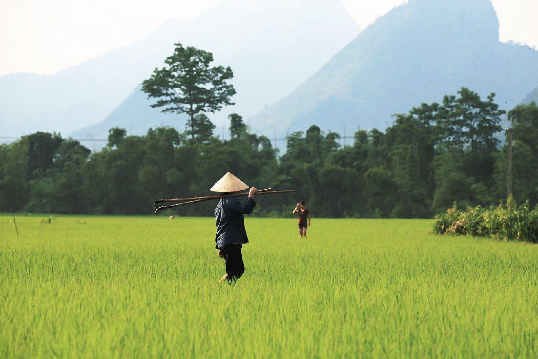 Rucksack Vietnam