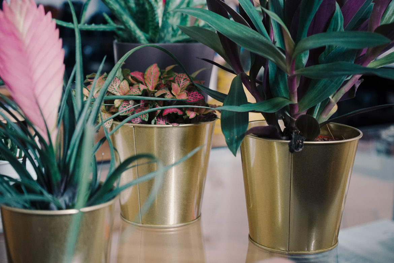 Dito Ikea goldene Pflanzentöpfe